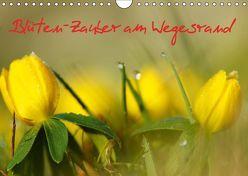 Blüten-Zauber am Wegesrand 2019 (Wandkalender 2019 DIN A4 quer) von Klapp,  Lutz