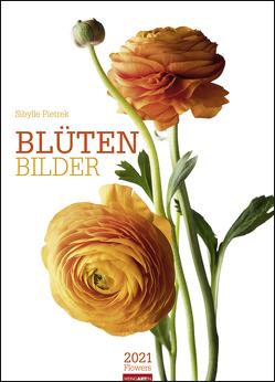 Blütenbilder Kalender 2021 von Pietrek,  Sibylle, Weingarten