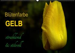 Blütenfarbe GELB (Wandkalender 2021 DIN A2 quer) von Weizel,  Evira