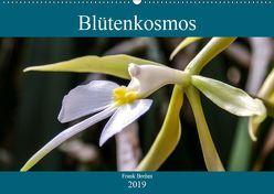 Blütenkosmos (Wandkalender 2019 DIN A2 quer) von Brehm - frankolor.de,  Frank