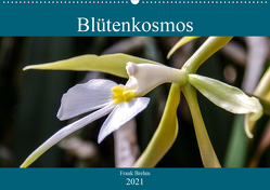 Blütenkosmos (Wandkalender 2021 DIN A2 quer) von Brehm - frankolor.de,  Frank