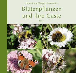 Blütenpflanzen und ihre Gäste (Teil 1) von Hintermeier,  Helmut, Hintermeier,  Margrit