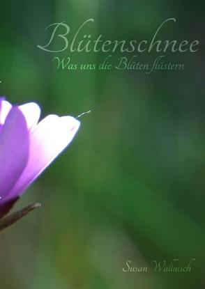 Blütenschnee von Wallnisch,  Susan
