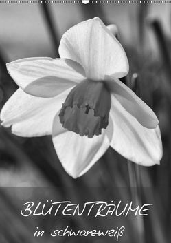 Blütenträume in schwarzweiß (Wandkalender 2019 DIN A2 hoch) von Reuke,  Sabine