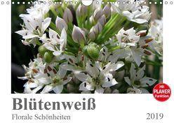 Blütenweiß – Florale Schönheiten (Wandkalender 2019 DIN A4 quer) von Schilling,  Linda