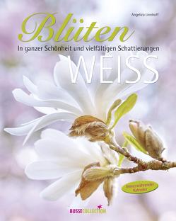 Blütenweiß von Linnhoff,  Angelica