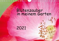 Blütenzauber in meinem Garten (Wandkalender 2021 DIN A4 quer) von JuSev