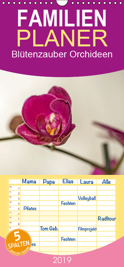 Blütenzauber Orchideen – Familienplaner hoch (Wandkalender 2019 , 21 cm x 45 cm, hoch) von Potratz,  Andrea