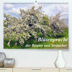 Blütezeit der Bäume und Sträucher (Premium, hochwertiger DIN A2 Wandkalender 2020, Kunstdruck in Hochglanz) von Reupert,  Lothar