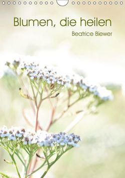 Blumen, die heilen (Wandkalender 2019 DIN A4 hoch) von Biewer,  Beatrice