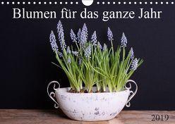 Blumen für das ganze Jahr (Wandkalender 2019 DIN A4 quer) von SchnelleWelten