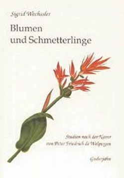 Blumen und Schmetterlinge von Drös,  Rainer, Maier,  Eva M, Senghas,  Karlheinz, Wechssler,  Sigrid