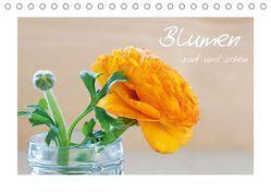 Blumen zart und schön (Tischkalender 2019 DIN A5 quer) von Fischer,  Petra