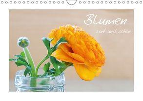 Blumen zart und schön (Wandkalender 2018 DIN A4 quer) von Fischer,  Petra