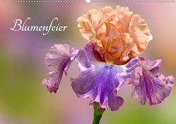 Blumenfeier (Wandkalender 2020 DIN A2 quer) von Livingvisions