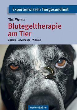Blutegeltherapie am Tier von Werner,  Tina