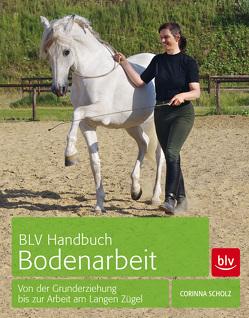 BLV Handbuch Bodenarbeit von Scholz,  Corinna