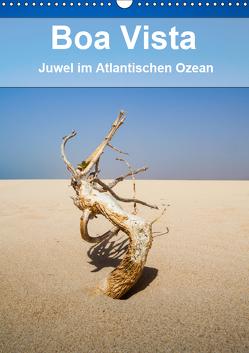Boa Vista – Juwel im Atlantischen Ozean (Wandkalender 2019 DIN A3 hoch) von Reuke,  Sabine