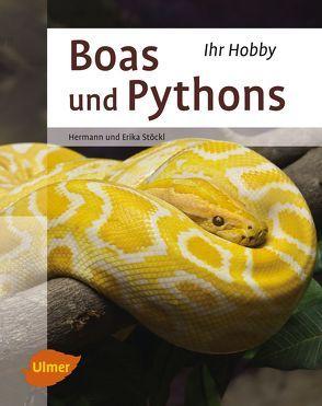 Boas und Pythons von Stöckl,  Erika und Hermann