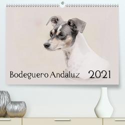 Bodeguero Andaluz 2021 (Premium, hochwertiger DIN A2 Wandkalender 2021, Kunstdruck in Hochglanz) von Redecker,  Andrea