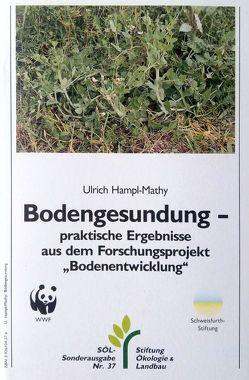 Bodengesundung von Hampl-Mathy,  Ulrich