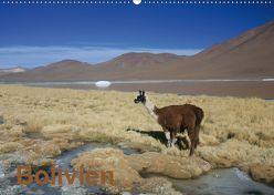 Bolivien (Wandkalender 2019 DIN A2 quer) von Alboter