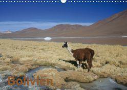 Bolivien (Wandkalender 2019 DIN A3 quer) von Alboter