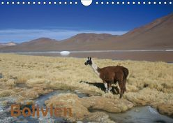 Bolivien (Wandkalender 2019 DIN A4 quer) von Alboter