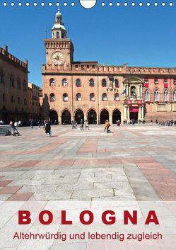 Bologna, altehrwürdig und lebendig zugleich (Wandkalender 2019 DIN A4 hoch) von J. Richtsteig,  Walter