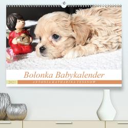 Bolonka Babykalender 2021 (Premium, hochwertiger DIN A2 Wandkalender 2021, Kunstdruck in Hochglanz) von Katharina Tessnow,  Antonia