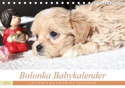 Bolonka Babykalender 2021 (Tischkalender 2021 DIN A5 quer) von Katharina Tessnow,  Antonia