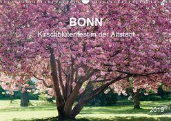 Bonn – Kirschblütenfest in der Altstadt (Wandkalender 2019 DIN A3 quer) von Reif,  Wolfgang