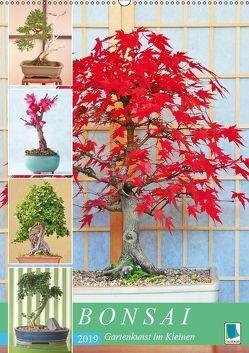 Bonsai: Gartenkunst im Kleinen (Wandkalender 2019 DIN A2 hoch) von CALVENDO