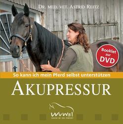 Booklet zur DVD Akupressur von Orterer,  Christine, Reitz,  Astrid, Sonntag,  Isabella