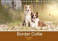 Border Collie – Bunt und clever! (Tischkalender 2020 DIN A5 quer) von Mayer Tierfotografie,  Andrea