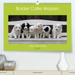Border Collie Welpen (Premium, hochwertiger DIN A2 Wandkalender 2020, Kunstdruck in Hochglanz) von Lindert-Rottke,  Antje