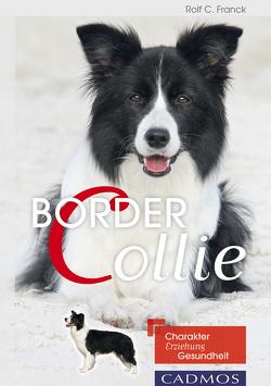 Border Collie von Franck,  Rolf C.