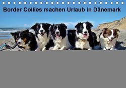 Border Collies machen Urlaub in Dänemark (Tischkalender 2021 DIN A5 quer) von Busch,  Eva