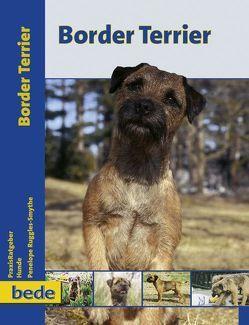 Border Terrier von Ruggles-Smythe,  Penelope