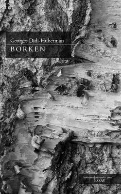 Borken von Didi-Huberman,  Georges