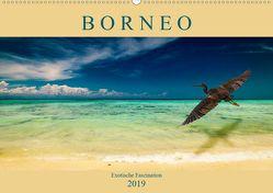 Borneo – Exotische Faszination (Wandkalender 2019 DIN A2 quer) von Wünsche,  Arne