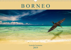 Borneo – Exotische Faszination (Wandkalender 2019 DIN A3 quer) von Wünsche,  Arne