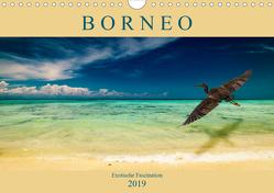 Borneo – Exotische Faszination (Wandkalender 2019 DIN A4 quer) von Wünsche,  Arne