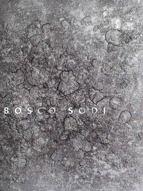 Bosco Sodi von Krieger,  Jürgen