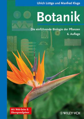 Botanik – Die einführende Biologie der Pflanzen von Kluge,  Manfred, Lüttge,  Ulrich