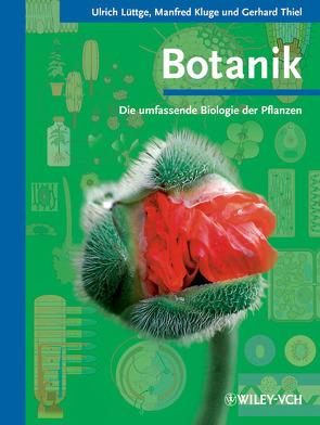Botanik – Die umfassende Biologie der Pflanzen von Kluge,  Manfred, Lüttge,  Ulrich, Thiel,  Gerhard