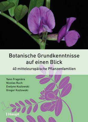 Botanische Grundkenntnisse auf einen Blick von Fragnière,  Yann, Kozlowski,  Evelyne, Kozlowski,  Gregor, Ruch,  Nicolas