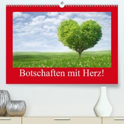 Botschaften mit Herz! (Premium, hochwertiger DIN A2 Wandkalender 2021, Kunstdruck in Hochglanz) von Stanzer,  Elisabeth