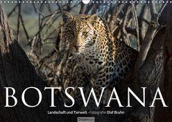 Botswana – Landschaft und Tierwelt (Wandkalender 2019 DIN A3 quer) von Bruhn,  Olaf