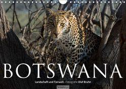 Botswana – Landschaft und Tierwelt (Wandkalender 2019 DIN A4 quer) von Bruhn,  Olaf